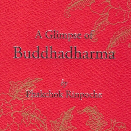Learning Dharma is not just learning the words.