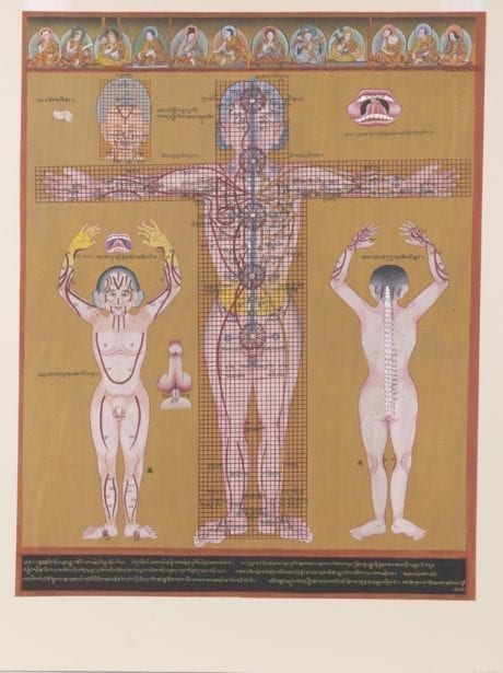 Tibetan Medicine Basics